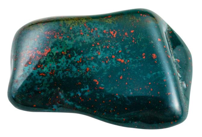 Гелиотроп разноцветные красные вкрапления