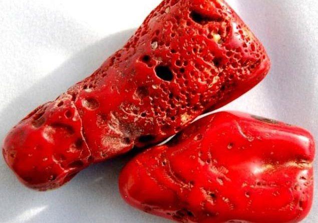 Коралл красный как будто не камень